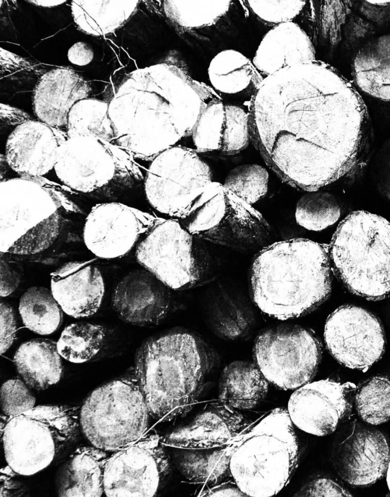 Ace's Tree & Garden Service - Timber Logs